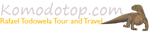 Komodo Top  | The local tour operator in Flores island. Since 2010